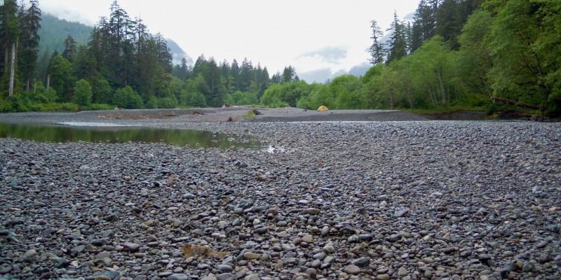 Danny's Summer Camping Trip – Tahsish River (Kyuquot Sound)