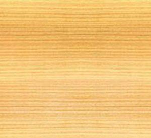 agathis or kauri lumber