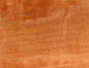 arbutus lumber