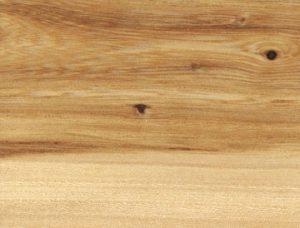 elm wood slabs