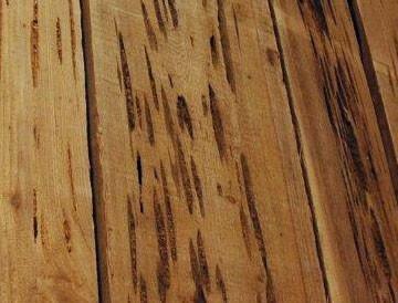 pecky cypress lumber