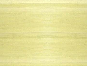 poplar lumber
