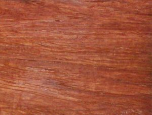 red narra (rosewood) lumber