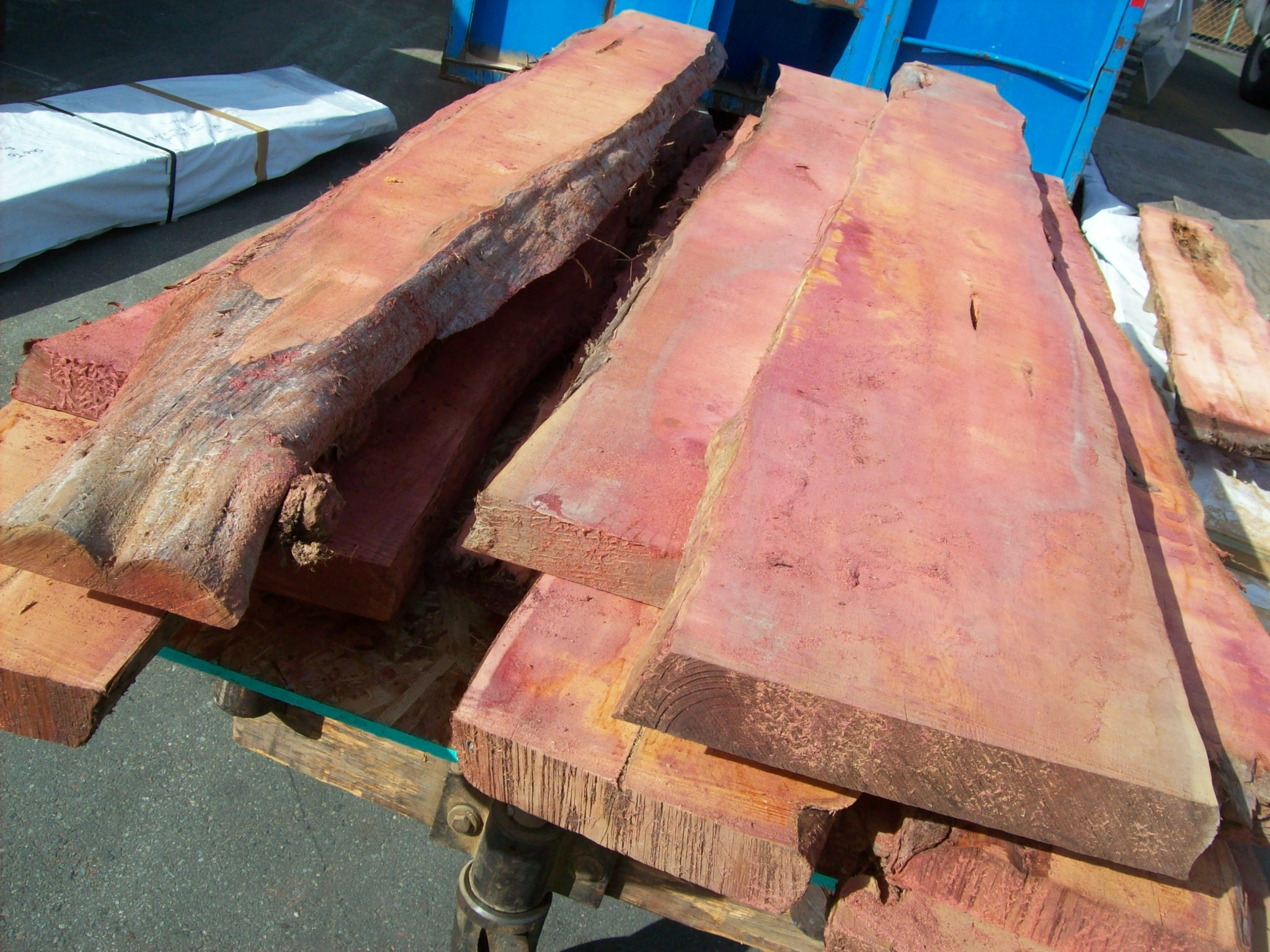 yew live edge slabs