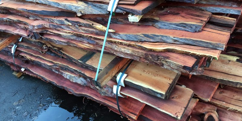 New Pacific Yew Slabs