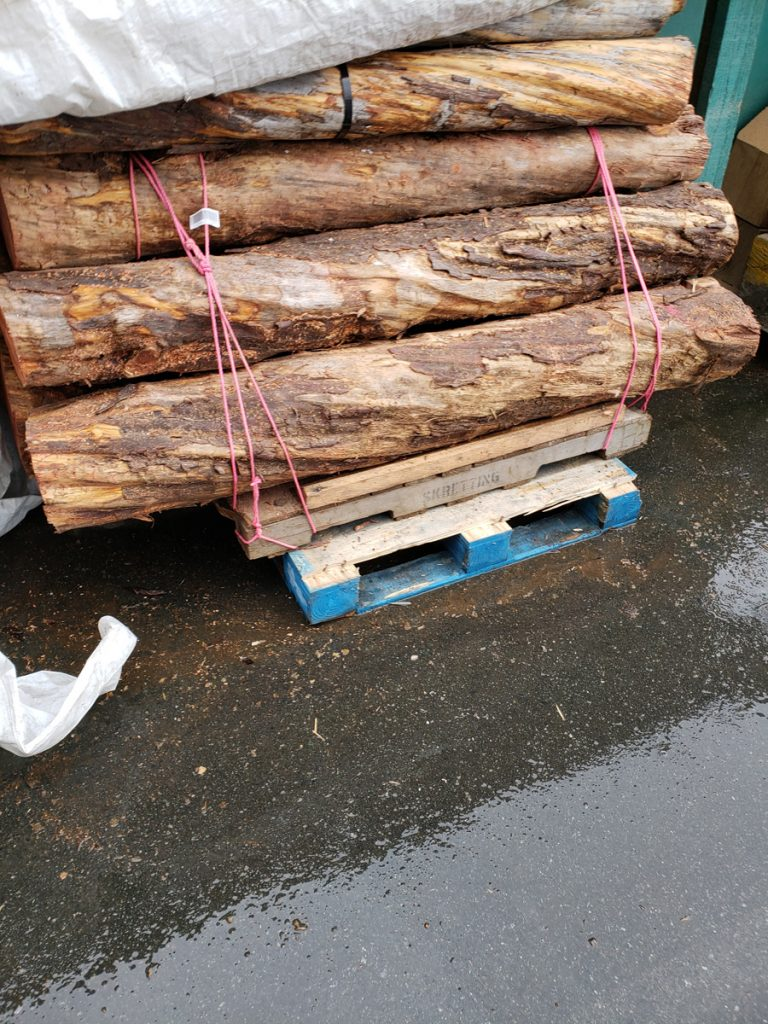 Yew logs for bow staves in stock west wind hardwood